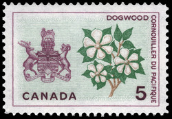 Dogwood, British Columbia Canada Postage Stamp | Floral Emblems