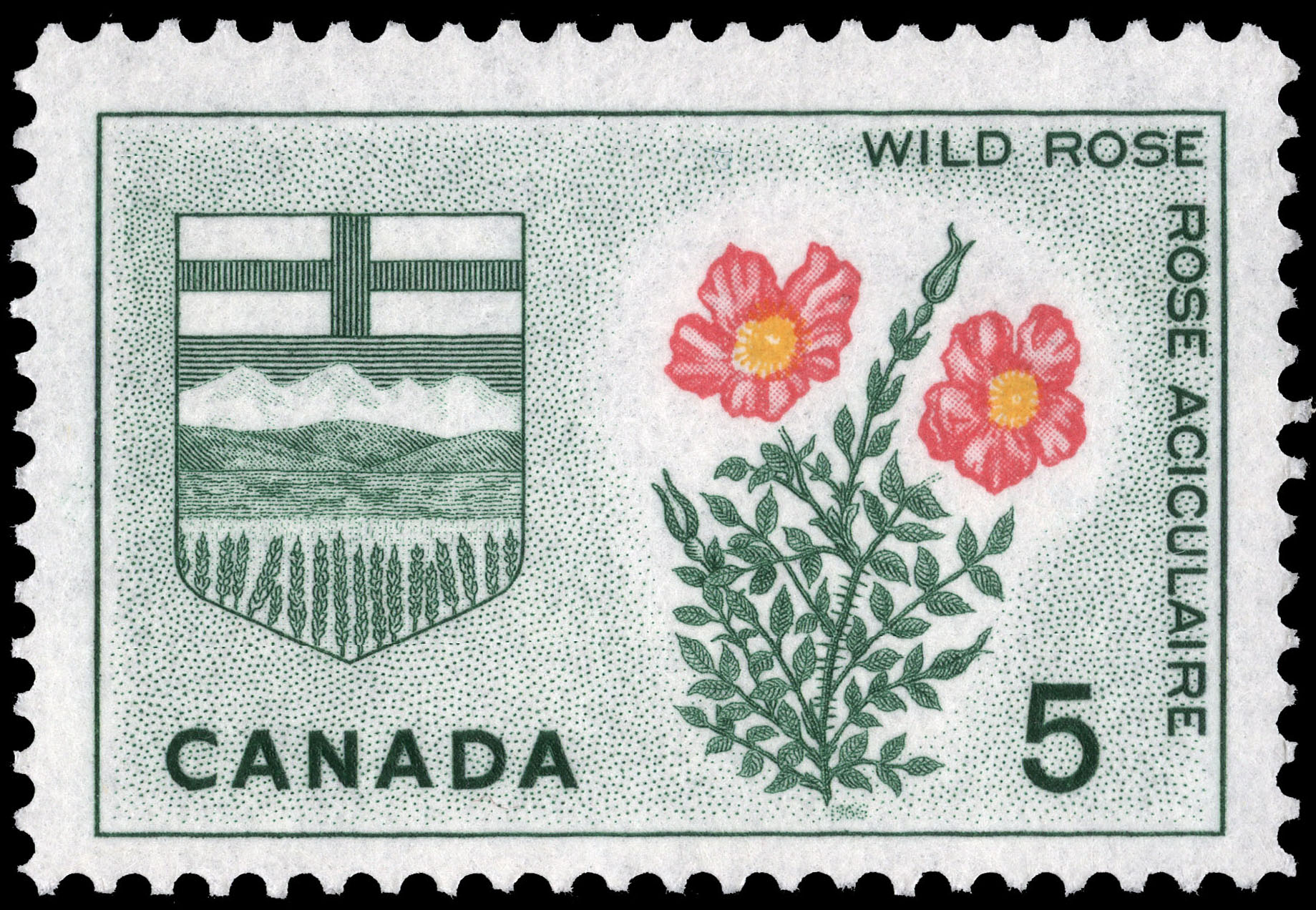 Wild Rose, Alberta Canada Postage Stamp | Floral Emblems