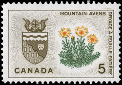 Mountain Avens, Northwest Territories Canada Postage Stamp | Floral Emblems