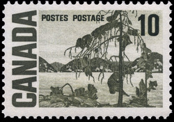 The Jack Pine Canada Postage Stamp | Centennial Issue