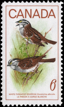 White-throated Sparrow, Zonatrichia albicollis Canada Postage Stamp | Birds