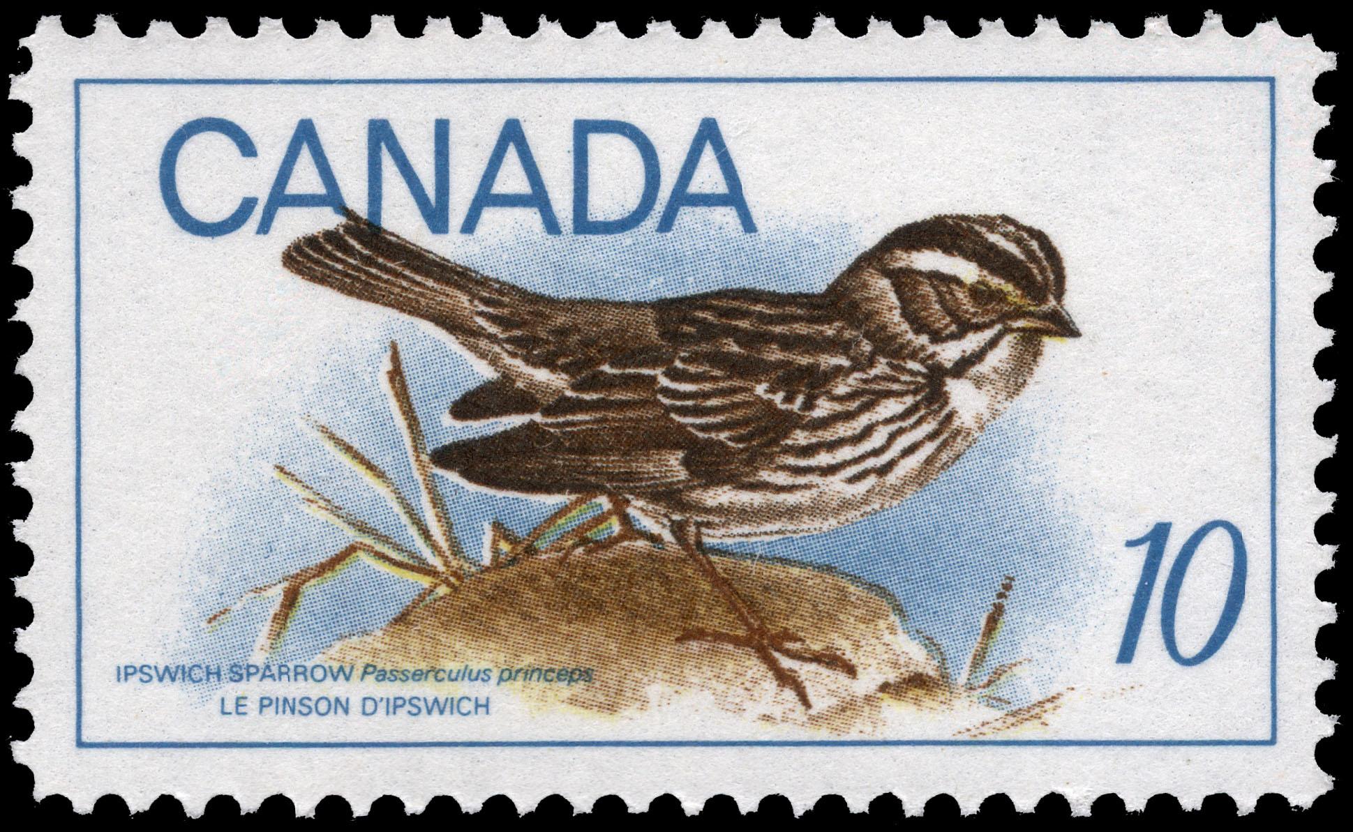 Ipswich Sparrow, Passerculus princeps Canada Postage Stamp
