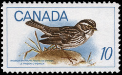 Ipswich Sparrow, Passerculus princeps Canada Postage Stamp