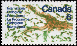 International Biological Programme Canada Postage Stamp