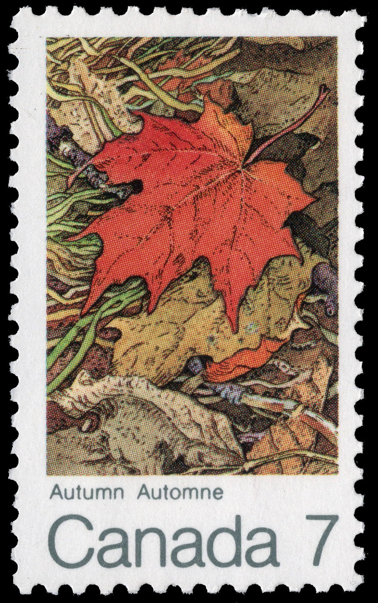 Autumn Canada Postage Stamp | The Maple in four Seasons