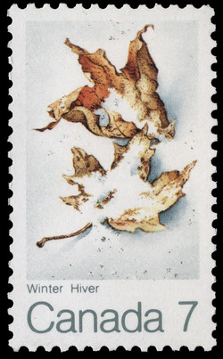 Winter Canada Postage Stamp | The Maple in four Seasons