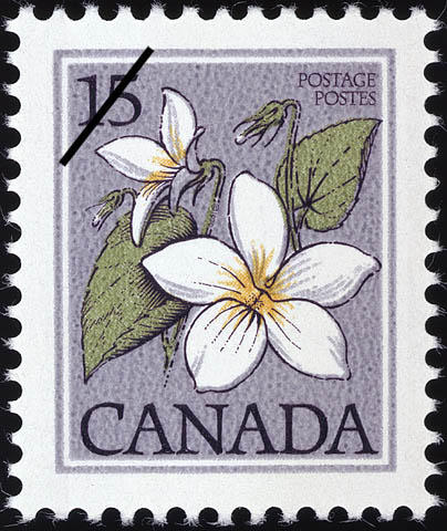Canada Violet, Viola canadensis Canada Postage Stamp | Wildflowers of Canada