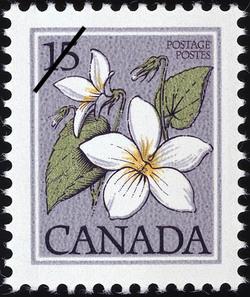 Canada Violet, Viola canadensis Canada Postage Stamp | Wildflowers of Canada