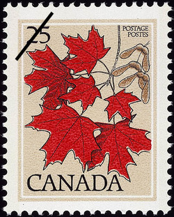 Sugar Maple, Acer saccharum  Postage Stamp