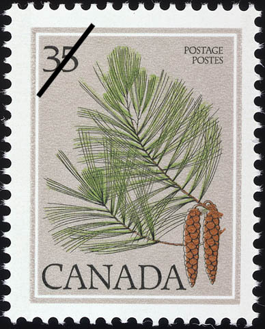 Eastern White Pine, Pinus strobus Canada Postage Stamp | Trees of Canada