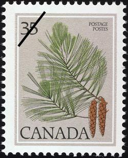 Eastern White Pine, Pinus strobus  Postage Stamp
