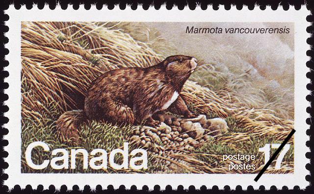 Vancouver Island Marmot, Marmota vancouverensis Canada Postage Stamp | Endangered Wildlife