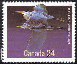 Great Blue Heron Canada Postage Stamp | Birds of Canada