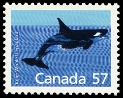 Killer Whale Canada Postage Stamp | Canadian Mammals
