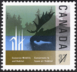 Moose  Postage Stamp