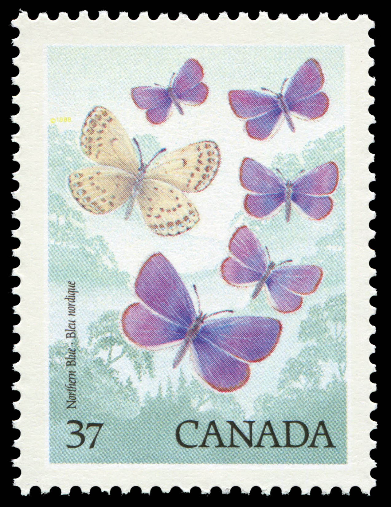 Northern Blue Canada Postage Stamp