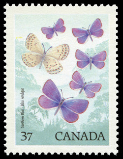 Northern Blue Canada Postage Stamp | Butterflies of Canada