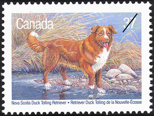 Nova Scotia Duck Tolling Retriever Canada Postage Stamp