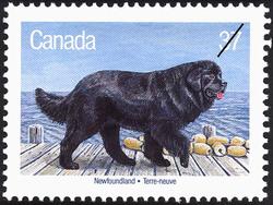 Newfoundland Canada Postage Stamp | Dogs of Canada