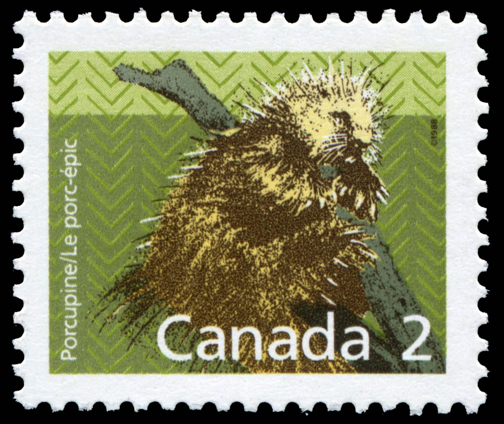 Porcupine Canada Postage Stamp | Small Canadian Mammals