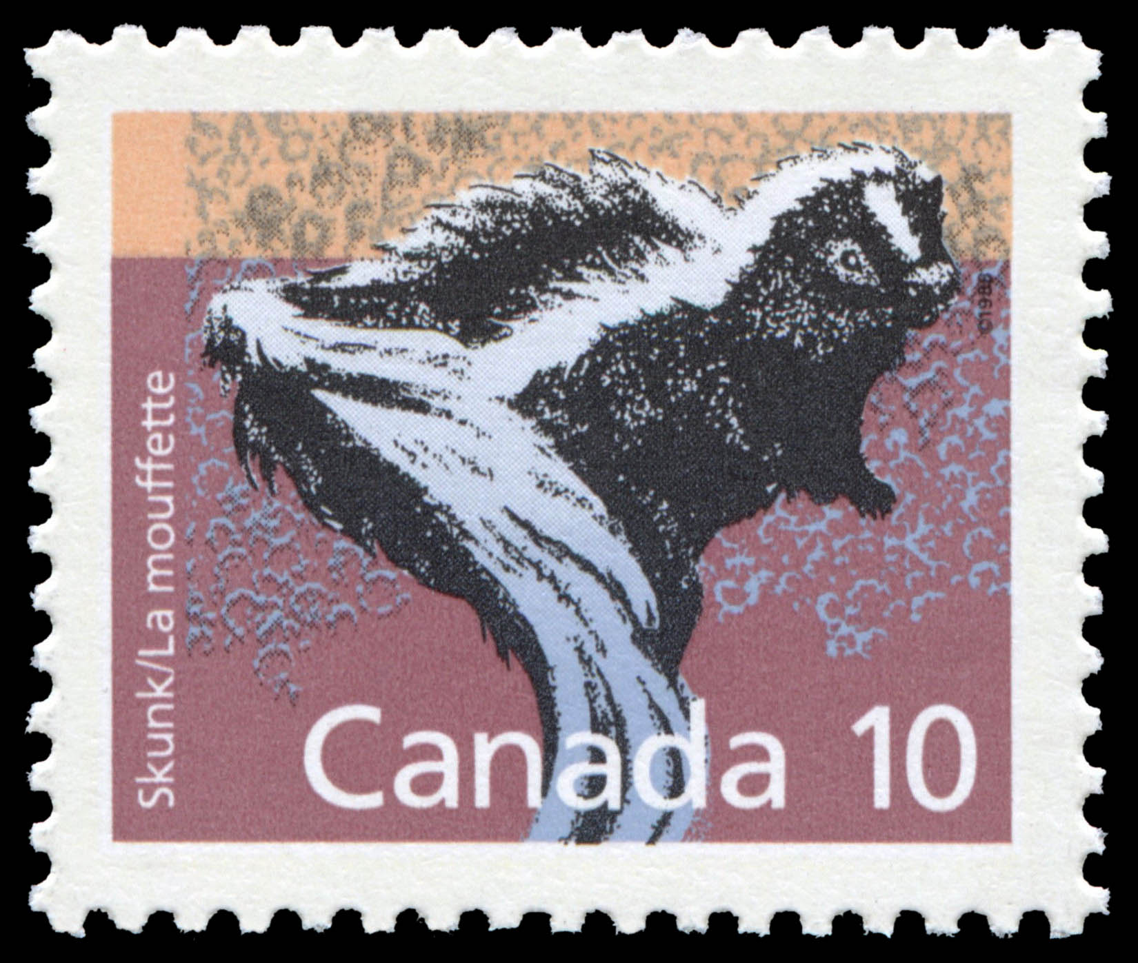Skunk Canada Postage Stamp | Small Canadian Mammals