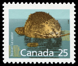 Beaver Canada Postage Stamp | Small Canadian Mammals