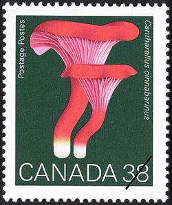 Cantharellus cinnabarinus, Cinnabar Chanterelle Canada Postage Stamp | Mushrooms