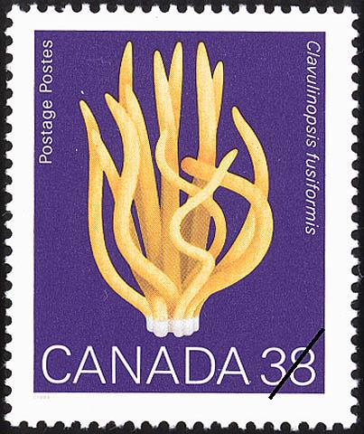 Clavulinopsis fusiformis, Spindle Coral Canada Postage Stamp
