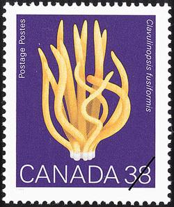 Clavulinopsis fusiformis, Spindle Coral Canada Postage Stamp | Mushrooms