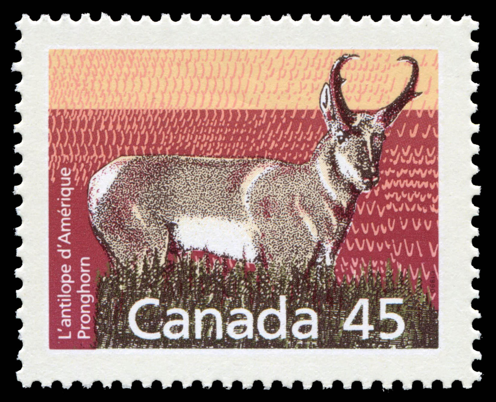 Pronghorn Canada Postage Stamp