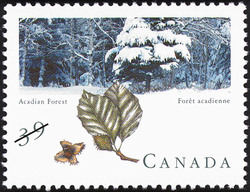 Acadian Forest Canada Postage Stamp | Canadian Forests