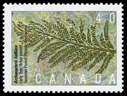 Archaeopteris halliana, Early Tree, Devonian Period Canada Postage Stamp