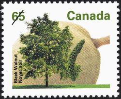 Black Walnut Canada Postage Stamp | Fruit Trees