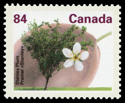 Stanley Plum Canada Postage Stamp | Fruit Trees