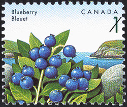 Blueberry Canada Postage Stamp