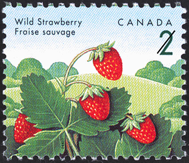 Wild Strawberry Canada Postage Stamp