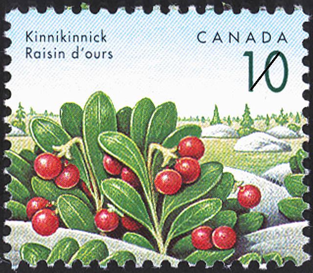 Kinnikinnick Canada Postage Stamp