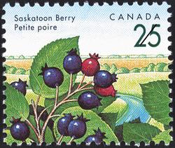 Saskatoon Berry Canada Postage Stamp | Edible Berries