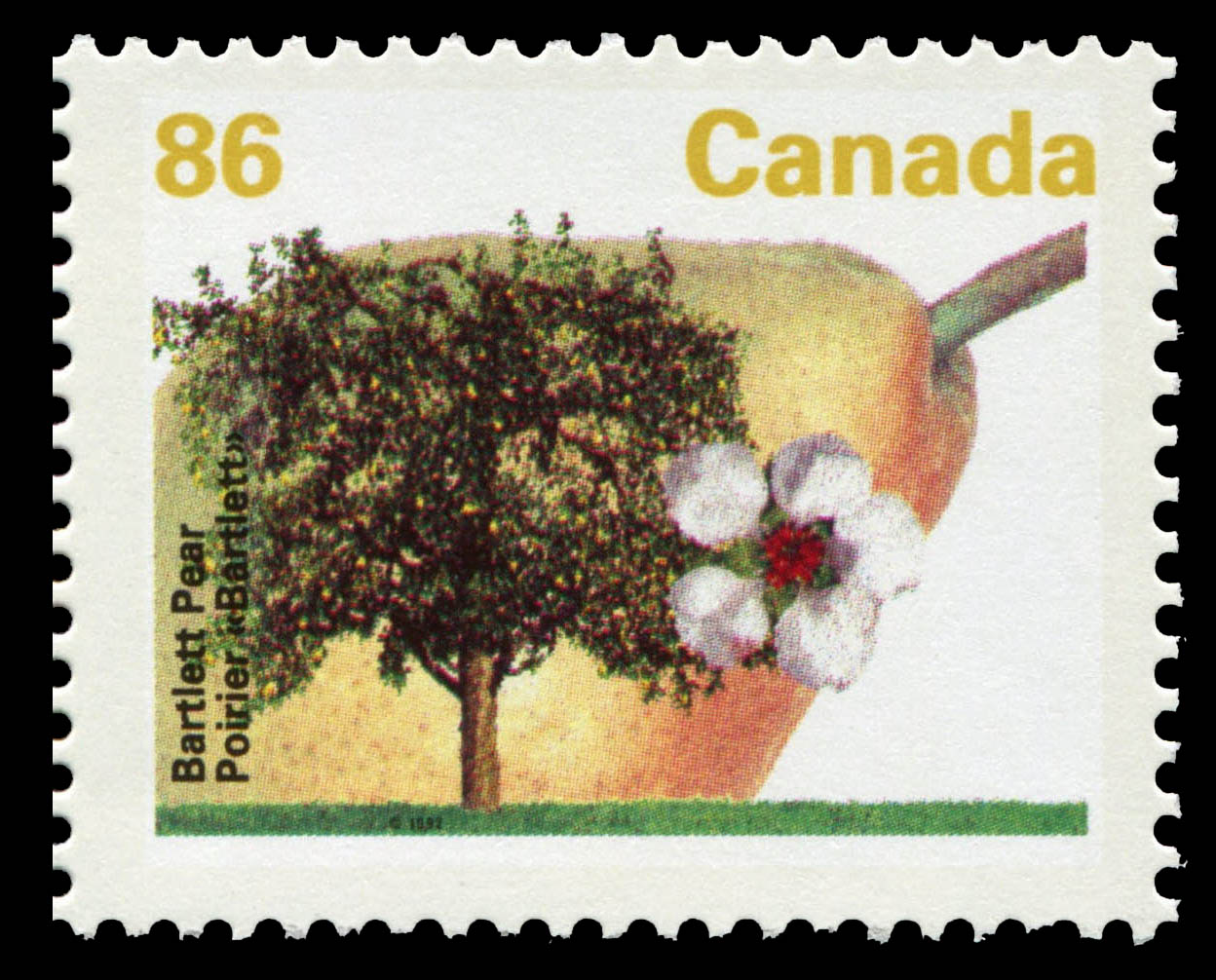 Bartlett Pear Canada Postage Stamp | Fruit Trees