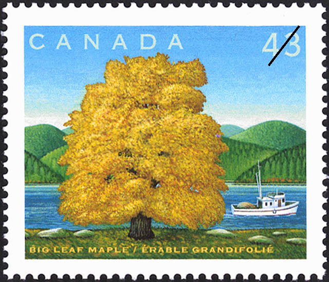 Big Leaf Maple Canada Postage Stamp