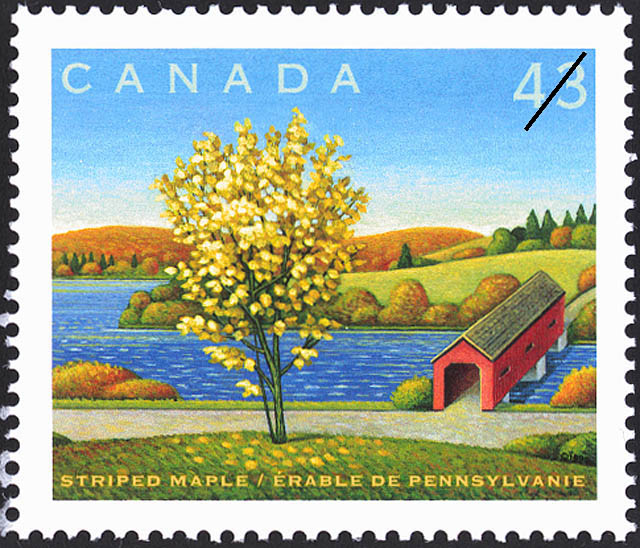 Striped Maple Canada Postage Stamp