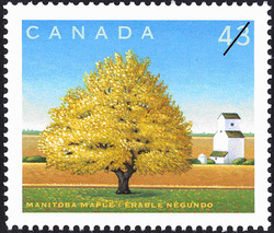 Manitoba Maple Canada Postage Stamp