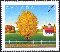 Black Maple Canada Postage Stamp