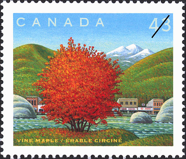 Vine Maple Canada Postage Stamp