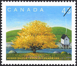 Hedge Maple Canada Postage Stamp