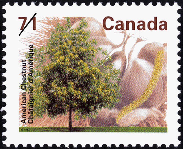 American Chestnut Canada Postage Stamp | Fruit Trees