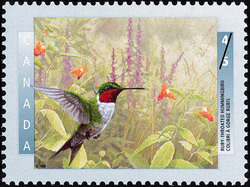 Ruby-Throated Hummingbird Canada Postage Stamp | Birds of Canada