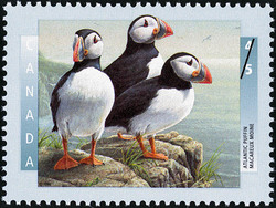 Atlantic Puffin Canada Postage Stamp | Birds of Canada