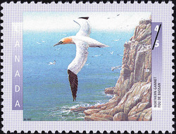 Northern Gannet Canada Postage Stamp | Birds of Canada