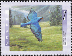 Mountain Bluebird Canada Postage Stamp | Birds of Canada